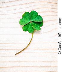 trèfle, feuille, mesquin, foi, espoir, bois, amour, feuilles, symbolique, quatre, arrière-plan., seconde, quatrième, luck., troisième, premier