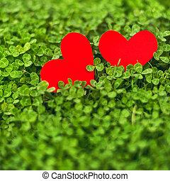 trèfle, papier, rouge vert, cœurs