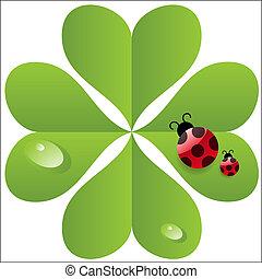trèfle, vecteur, feuille, ladybird.