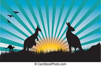 três, canguru, azul, raios