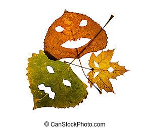três, coloridos, tomada-o-lanterna, folhas