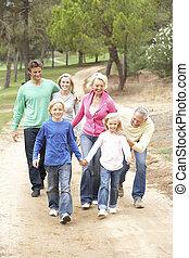 três família geração, desfrutando, caminhada dentro, parque