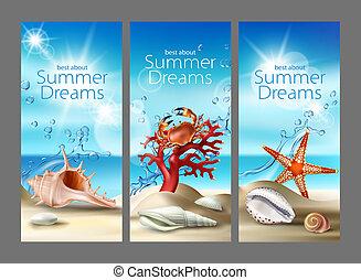 três, turquesa, fundos, com, verão, praia arenosa, seashells, seixos, starfish, carangueijo, e, coral