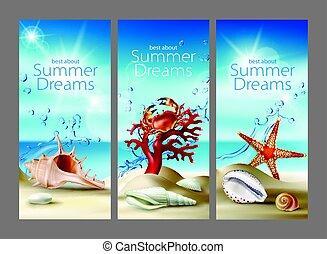 três, vetorial, turquesa, fundos, com, verão, praia arenosa, seashells, seixos, starfish, carangueijo, e, coral