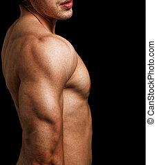 tríceps, y, hombro, de, hombre, con, muscular, ataque,...