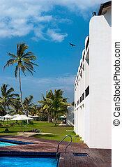trópicos, piscina hotel, natação