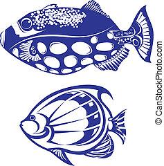trópusi hal