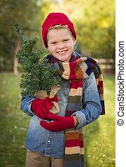 tröttsam, pojke, träd, ung, holdingen, liten, utsida., helgdag, beklädnad, jul, stilig