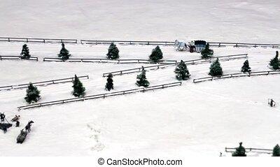 traîneaux, dessiné, neigeux, route, cheval