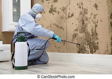 trabajador, rociar, control, pared, pesticida, peste