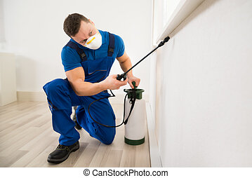 trabajador, rociar, pesticida, en, ventana, esquina