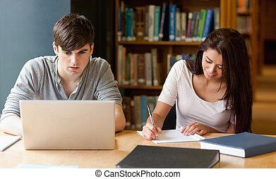 trabajando, estudiantes, juntos