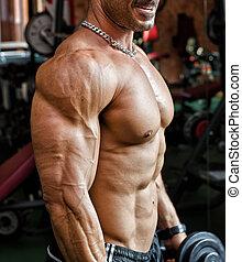 trabajando, gimnasio, muscular, culturista, torso, afuera