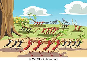 trabajando, hormigas