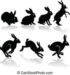 trabajo, siluetas, conejo