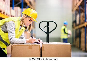 trabalhadores, jovem, trabalhando, warehouse.