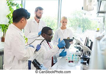 trabalhando, doutor, estudantes, virology, fazer, lab.,...