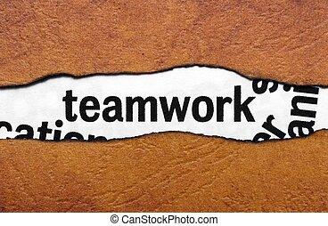trabalho equipe