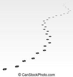 traccia, di, cane, condurre, lontano, away.