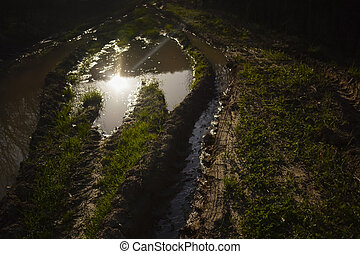 Trace of a tire in the mud
