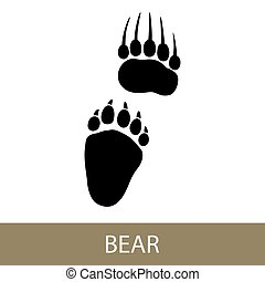 Trace of Animal Bear - Track of Forest Animal, Trace of a ...