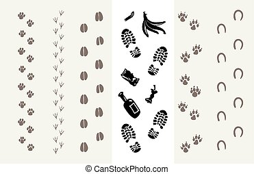 Traces of animals and humans