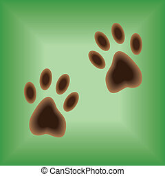 Traces of paws