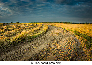 Traces of wheels on a sandy road through fields and dark sky