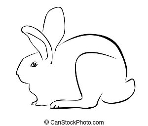 Tracing of a rabbit on a white background