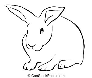 Tracing of a white rabbit - Tracing of a hare on a white...