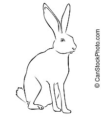 Tracing of a white rabbit on a white background