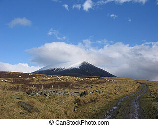 Track in Scotland - Track in the Scottish highlands