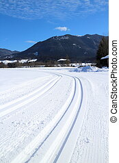 track in the snow