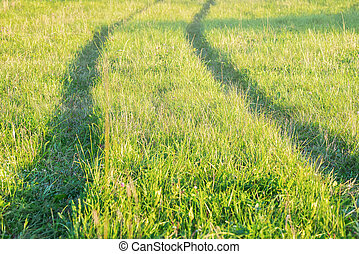 Track of tractor in the green grass