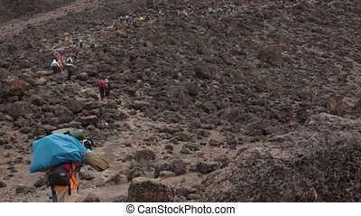 Track on Kilimanjaro on the Machame Route Whiskey. 3 day