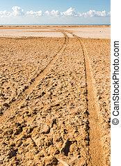 Track on Ras Mohammed national park, Sinai, Egypt