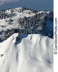 Tracks in the snow - Off-slopes ski tracks in the Alps.