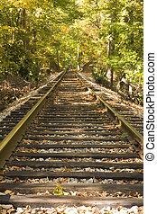 Tracks Into Trees
