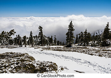 Tracks on the snow on Mount San Antonio (Mt Baldy) showing the hiking trail direction; white clouds in the background covering the forest and the valley, Los Angeles county, California
