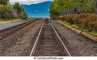 Tracks Toward Blue Mountains