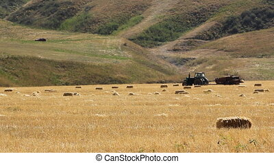 Tractor 2 - Farm machinery gathering hay for animal fodder.