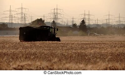 Tractor and combine harvester on a grainfield