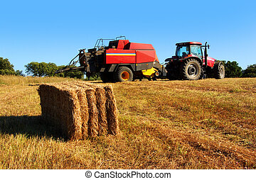 Tractor and Straw - Agriculture landscape with straw bale...