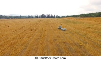 Tractor Baler Making Hay Bales In Stubble Field - This is an...