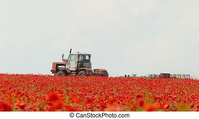 tractor for a field with red flowers