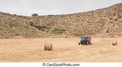 Tractor harvesting in the cereal field