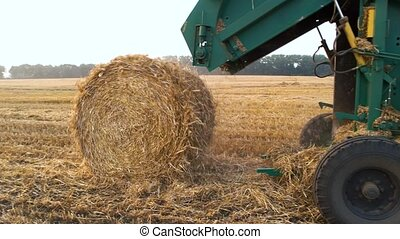 Tractor making hay bales. combine Harvester swathing a crop.