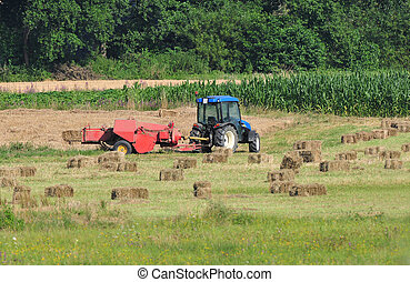 Tractor making hay bales - Photo of tractor making hay bales