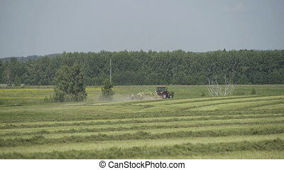 Tractor moving on agricultural field for harvesting land....