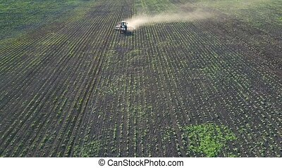 Tractor performs seeding on the field